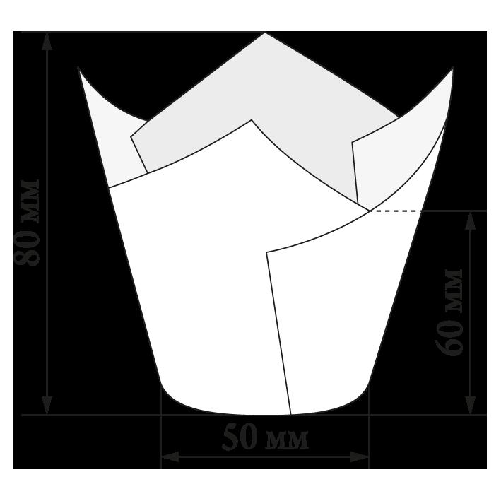 TL-150.png